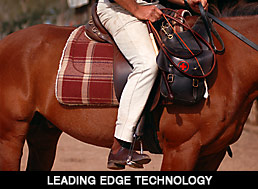 Horse Riding Technology